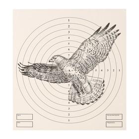 Мишень 'Орёл' для стрельбы из пневматического  оружия, 14 х14 см, дистанция 10 метров Ош