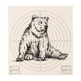 Мишень 'Медведь' для стрельбы из пневматического  оружия,14 х14 см, дистанция 10 метров Ош