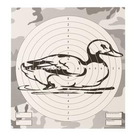 Мишень 'Утка' для стрельбы из пневматического оружия,14 х14 см, дистанция 10 метров Ош