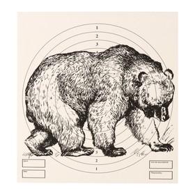 Мишень 'Медведь' для стрельбы из пневматического  оружия,14 х14 см,дистанция 10 метров Ош