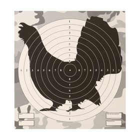 Мишень 'Глухарь' для стрельбы из пневматического  оружия,14 х14 см,дистанция 10 метров Ош