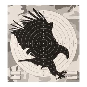 Мишень 'Орел' для стрельбы из пневматического  оружия,14 х14 см, дистанция 10 метров Ош