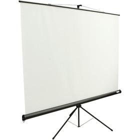 Экран Lumien 200x200 Eco View LEV-100103 1:1, напольный, рулонный Ош