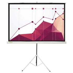Экран Cactus 180x180 Triscreen CS-PST-180x180 1:1, напольный, рулонный Ош