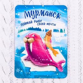Магнит «Мурманск. Морж» Ош