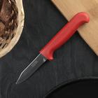 Нож кухонный «Элегант» для овощей, лезвие 7,5 см, с красной ручкой