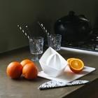 Соковыжималка для апельсинов AHOI XL, белая - Фото 2