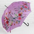 Зонт полуавтоматический «Нежность», 8 спиц, R = 48 см, цвет розовый