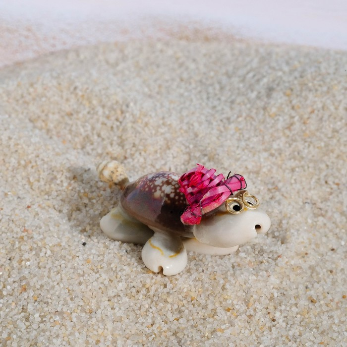 Сувенир из ракушек Черепашка, 5 х 3 см, микс цветов