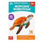 Обучающие карточки Г. Домана «Морские животные», на скрепке, 20 стр. - Фото 1