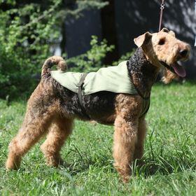 Охлаждающая попона для собак OSSO, 80 (ДС 80 см, ОШ до 100 см) Ош