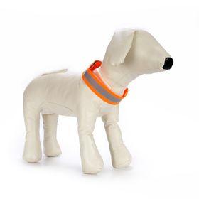 Сигнальный ошейник для собак OSSO, S (ОШ 20-30 см), микс цветов Ош