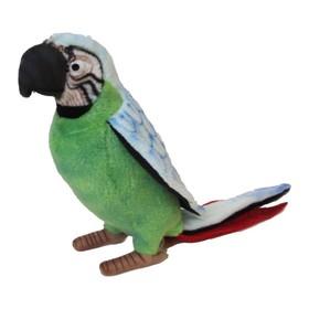 Мягкая игрушка «Зелёный попугай», 37 см