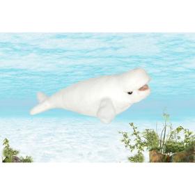 Мягкая игрушка «Кит Белуха», 25 см
