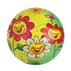 Мяч «Весёлые ромашки», глянцевый, d=22 см, 100 г