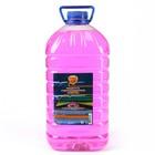 Жидкость стеклоомывателя Элтранс ЛЕТО, Жевательная резинка, 5 л - Фото 1