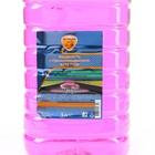 Жидкость стеклоомывателя Элтранс ЛЕТО, Жевательная резинка, 5 л - Фото 2