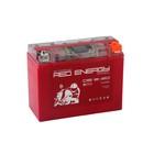 Аккумуляторная батарея Red Energy DS 12-20(Y50-N18L-A3,YTX24HL-BS,YTX24HL)12V,20Ач,обратная   339733