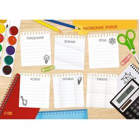 Расписание уроков 'Домашнее задание' А4 Ош