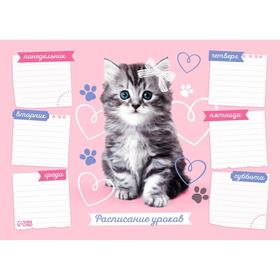 Расписание уроков 'Котёнок' А4 Ош