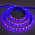 Светодиодная лента Ecola LED strip PRO, 10 мм, 12 В, RGB, 14.4 Вт, 60 Led/м, IP65, 5 м - Фото 1