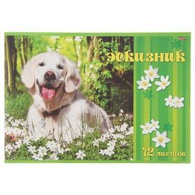 Эскизник А4, 12 листов на скрепке 'Счастливый пёс', бумажная обложка Ош