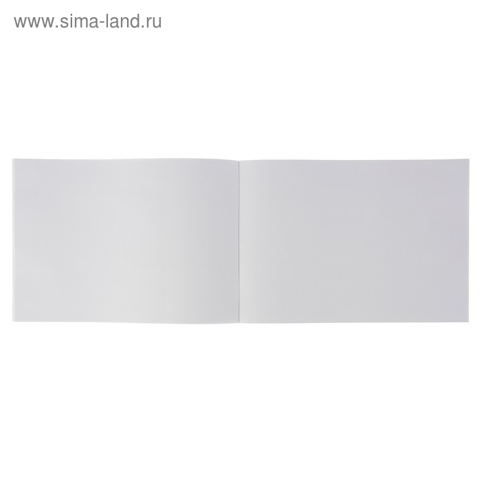 Альбом для рисования А4, 24 листа, «Дружные котята», бумажная обложка