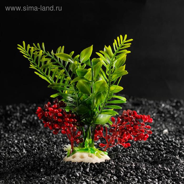 Растение искусственное аквариумное, 18 х 9 х 14 см