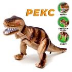 Динозавр «Рекс» работает от батареек, световые и звуковые эффекты. цвета МИКС