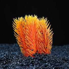 Растение искусственное аквариумное, 9 х 7 х 11 см, микс цветов Ош