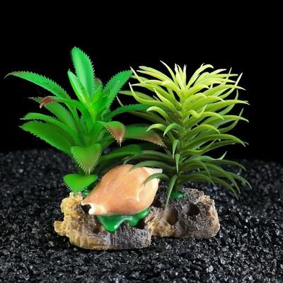 Островок с ракушками и растениями искусственными для аквариума, 10 х 9 х 12 см