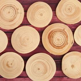 Спил 'Сосновый', круглый, d=4-7 см, h=3,5 мм Ош