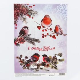 Декупажная карта «Птицы», 29,7 × 21 см, Ош