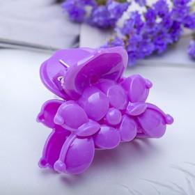 Краб для волос 'Цветной глянец' 5,5 см бабочка,микс Ош