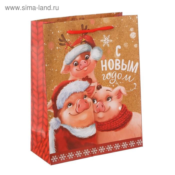 Пакет ламинат вертикальный «Весёлый Новый год», MS 18 х 23 х 8 см