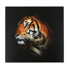 Картина 'Красивейший тигр' 50*50 см Ош