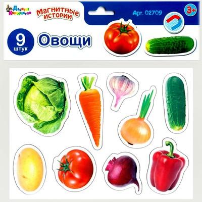 Магниты «Овощи» - Фото 1