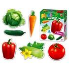 Макси-пазлы «Овощи»