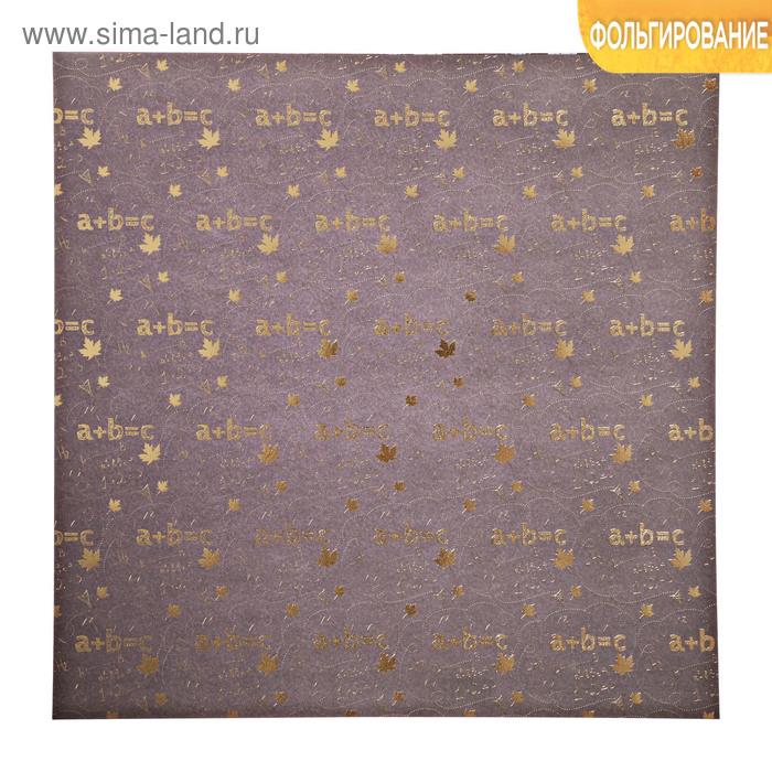 Бумага для скрапбукинга с фольгированием «Формулы», 30.5 × 30.5 см, 250 г/м