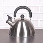 Чайник со свистком «Торенто. Блеск», 2 л, цвет серебристый
