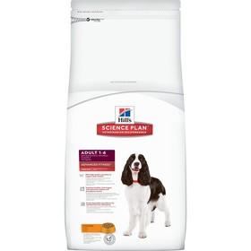 Сухой корм Hill's SP для собак средних пород, поддержание иммунитета, курица, 2,5 кг