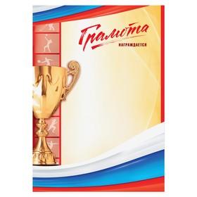 Грамота спортивная «Награждается», РФ символика, 157 гр., 21 х 29,5 см Ош