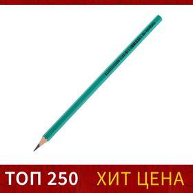 Карандаш чернографитный Calligrata HB, пластиковый Ош