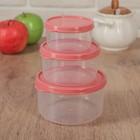 Набор контейнеров пищевых круглых Доляна, 3 шт: 150 мл, 300 мл, 500 мл, цвет коралловый - Фото 1