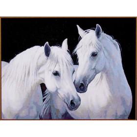 Алмазная мозаика «Пара белых лошадей», 26×20 см, 20 цветов