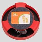 Игровой комплекс Пижон с подвижной мышкой, микс - Фото 5
