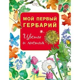Мой первый гербарий «Цветы и листья»