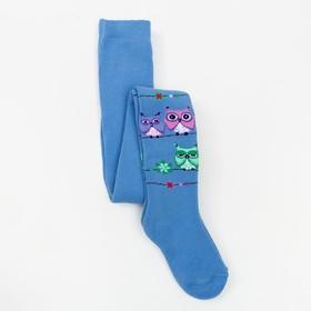Колготки детские махровые «Совы», цвет голубой, рост 110-116