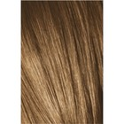 Краситель для волос Igora Absolutes Age Blend 7-560 Средний русый, Золотистый шоколадный, 60 мл