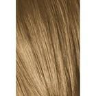 Краситель для волос Igora Absolutes 8-50 Светлый русый, Золотистый натуральный, 60 мл